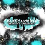 Junkies ausm Web